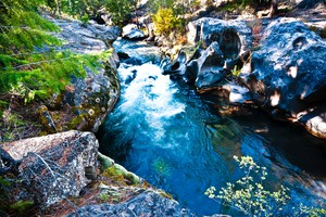 Frogs, Fish And Farmers Feel Out Compromise On Deschutes River