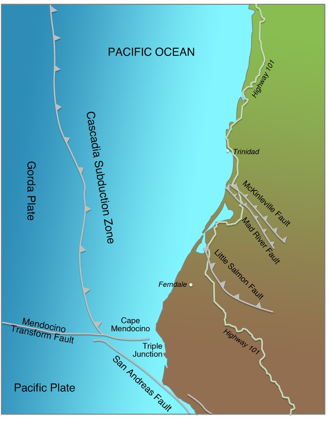 The Cascadia Subduction Zone and northern San Andreas Fault meet at a place called the Mendocino Triple Junction.