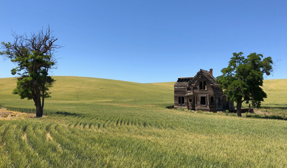 The Charles Nelson House sits alone in a field of wheat.