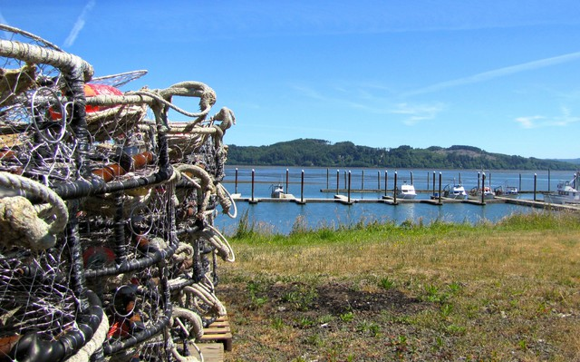 An unusually quiet summer day at the Port of Willapa Harbor in Tokeland, Washington. Normally, crabbing boats would be going out to set crab pots or returning with a fresh catch. But a toxic algae bloom has closed the crab harvest.