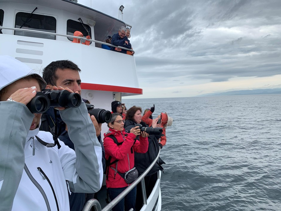 """Whale watch tour guests crowd the rail of the Island Explorer 4 to witness the so-called """"humpback comeback."""""""
