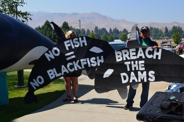 Protesters call for the removal of dams on the Snake River to help salmon spawn -- and consequently feed Puget Sound orcas. The protest came outside a meeting of the governor's orca task force in Wenatchee on Tuesday.