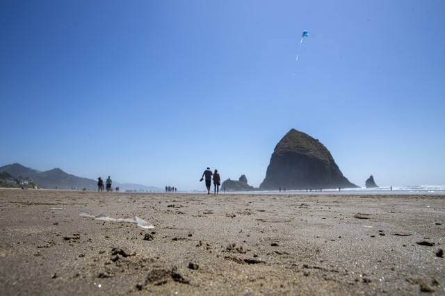 A strip of cellophane sticks out fromthe sand on Cannon Beach.