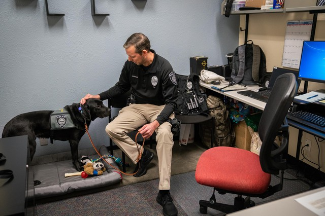 Officer Ben Costigan with the Gresham Police Department sits in his office with the department's new comfort dog Tagg on Dec. 23, 2019, in Gresham, Oregon.
