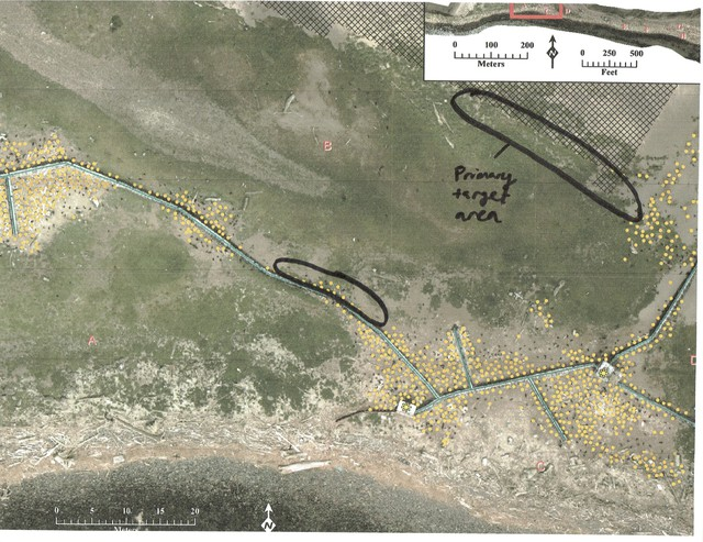 An aerial image of East Sand Island with areas targeted for shooting cormorants, according to documents obtained through a public records request.