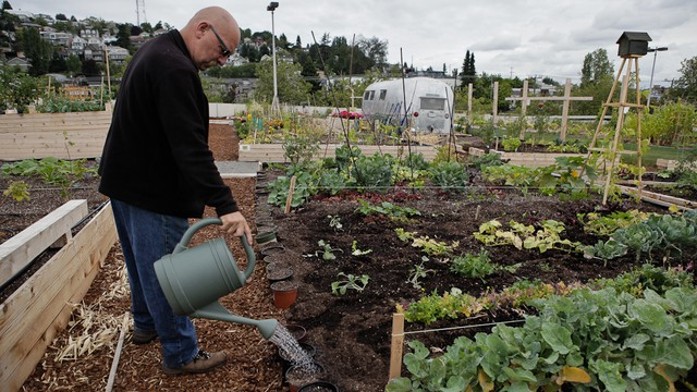 SEATTLE U2014  Scott Mills Visits A Parking Garage On Mercer Street In Seattle  Every Day To Tend To His Garden.