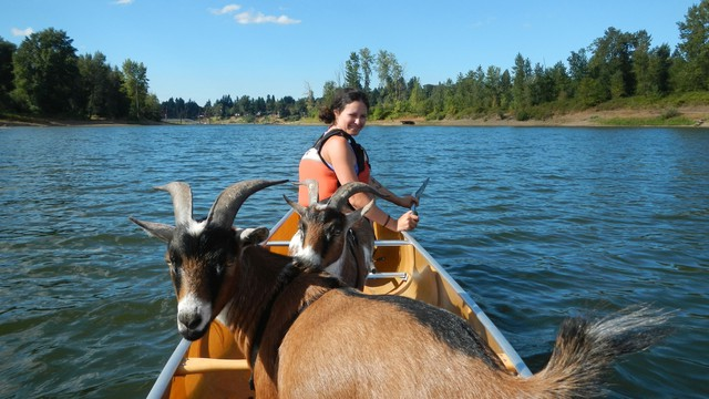 Clayton and New York float the Willamette with their owner Erica Somes.