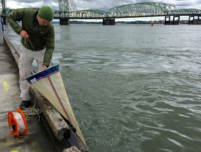 Eric Dexter collects microscopic plankton samples from the Columbia River using a very fine filter.