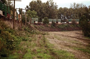 This railroad embankment performs double-duty, also serving as a levee to protect Portland from Columbia River floods. It's the same levee whose spectacular failure in 1948 resulted in floods that leveled the entire city of Vanport.
