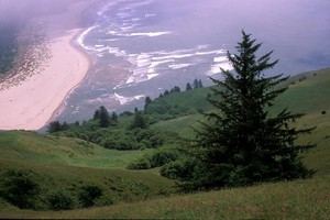 The view from Cascade Head Overlook on the Oregon Coast.