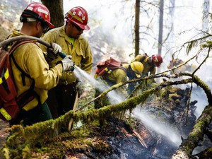 Mario Garcia (left) and José Perez work with a team to extinguish a portion of the Silver Greek Fire in Oregon's Silver Falls State Park on Saturday, July 14, 2018.