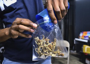 In this Friday, May 24, 2019 photo a vendor bags psilocybin mushrooms at a cannabis marketplace in Los Angeles. Oakland City Council will vote Tuesday, June 4, 2019, to decriminalize the possession and use of entheogenic, or psychoactive, plants and fungi.