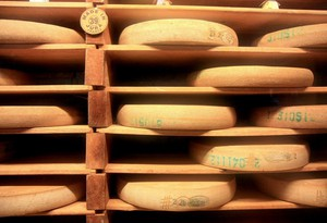 Comte cheese matures in a cellar.