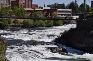 The city of Spokane has sued Monsanto over pollution from PCBs in the Spokane River. Monsanto was the sole manufacturer of PCBs. They were banned in the US in 1979.