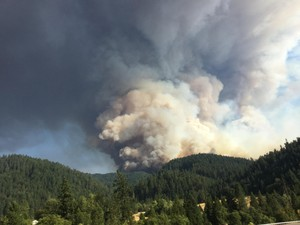 A smoke column towers above forestlands 11 miles east of Canyonville.