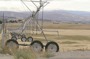Washington Dept. of Ecology Irrigation equipment sits idle on fields in the Kittitas Reclamation District in Central Washington in early September.