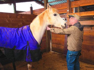 David Kelly pets Luiceduring rounds at the Oregon Horse Rescue, Kelly and his wife may have to close the sanctuary at the start of March 2018 if the Eugene-based nonprofit organization doesn't find some big donors fast.