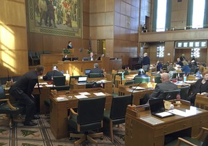Oregon Representatives debate on the House floor at the Capitol in Salem, Ore., Tuesday, Feb. 13, 2018.