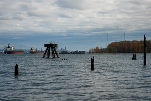 West Hayden Island and ships on the Columbia River