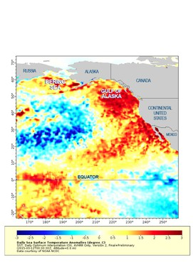 This map shows sea surface temperatures off the West Coast. The darker the red, the farther the temperatures are above average.