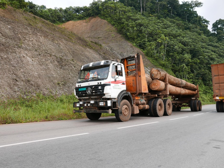 A truckload of tropical hardwood from west Central Africa called okoume. It's at the center of an environmental watchdog group's investigation into illegal logging and corruption.