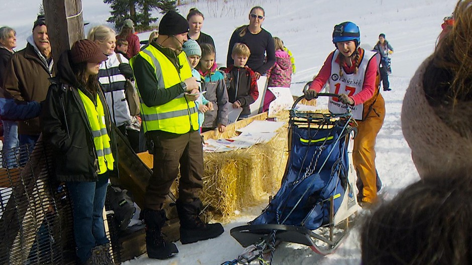 Musher Morgan Anderson takes off from the start gate of the Eagle Cap Extreme.