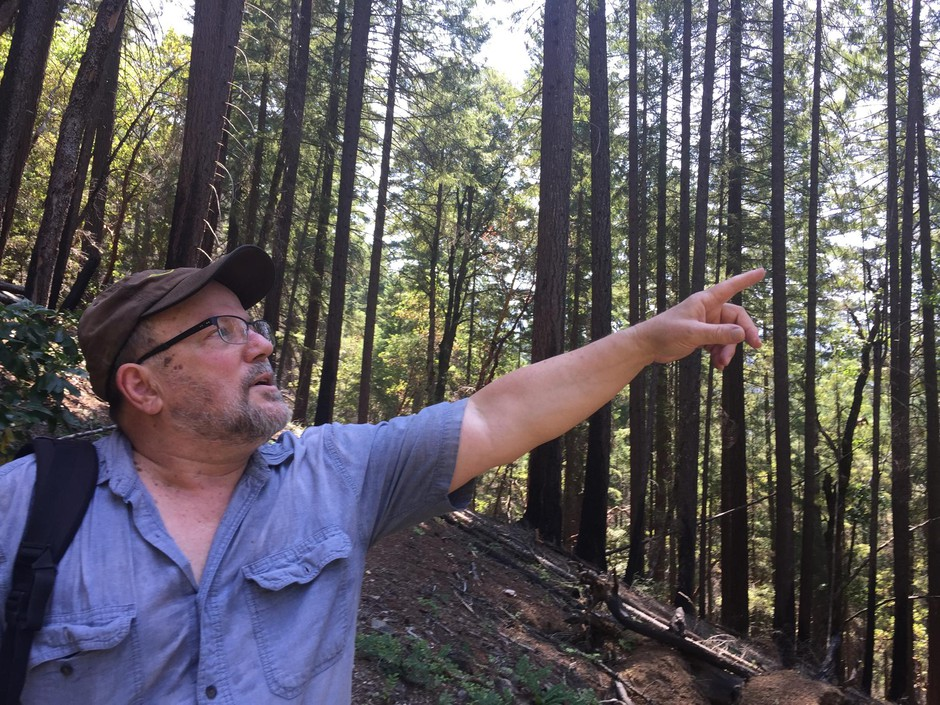 Former U.S. Forest Service employee and firefighter Rich Fairbanks points out the many trees that survived the Miller Complex Fire in 2017.