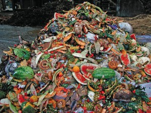 Food scraps will be collected and processed into energy at a new facility in North Portland.
